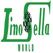 linosella-kenya-distributor-Nginu power